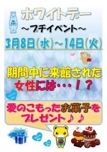 IMG_4491